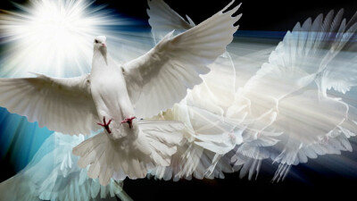 The Holy Spirit: Spirit of Truth